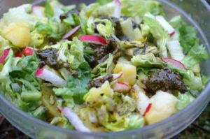 Kartoffelsalat mit Kürbiskernpesto
