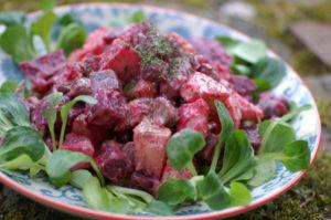 Rote Rüben Kartoffel Salat mit Gürkchen