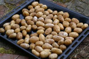 Ofen-Kartofferl